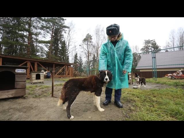 Урок арктической подготовки для кадетов Петрозаводского президентского кадетского училища (ППКУ)