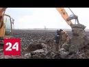 Эхо войны приморские поисковики подняли из болота самолет Пе 2 Россия 24