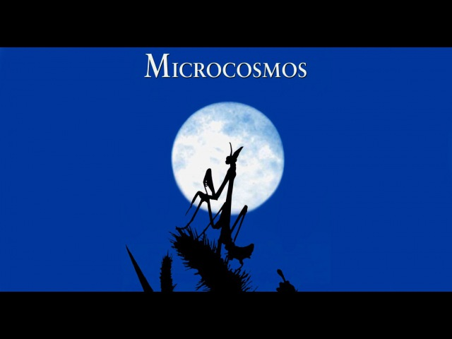 Микрокосмос / Microcosmos: Le peuple de l (1996)