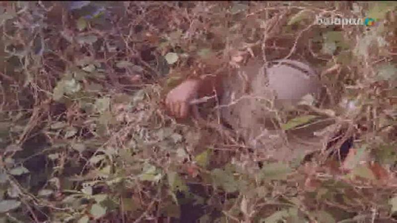 Достар, ертең «Қалқанқұлақ» телехикаясының 5-бөлімін 19:00-де көре аласыңдар!
