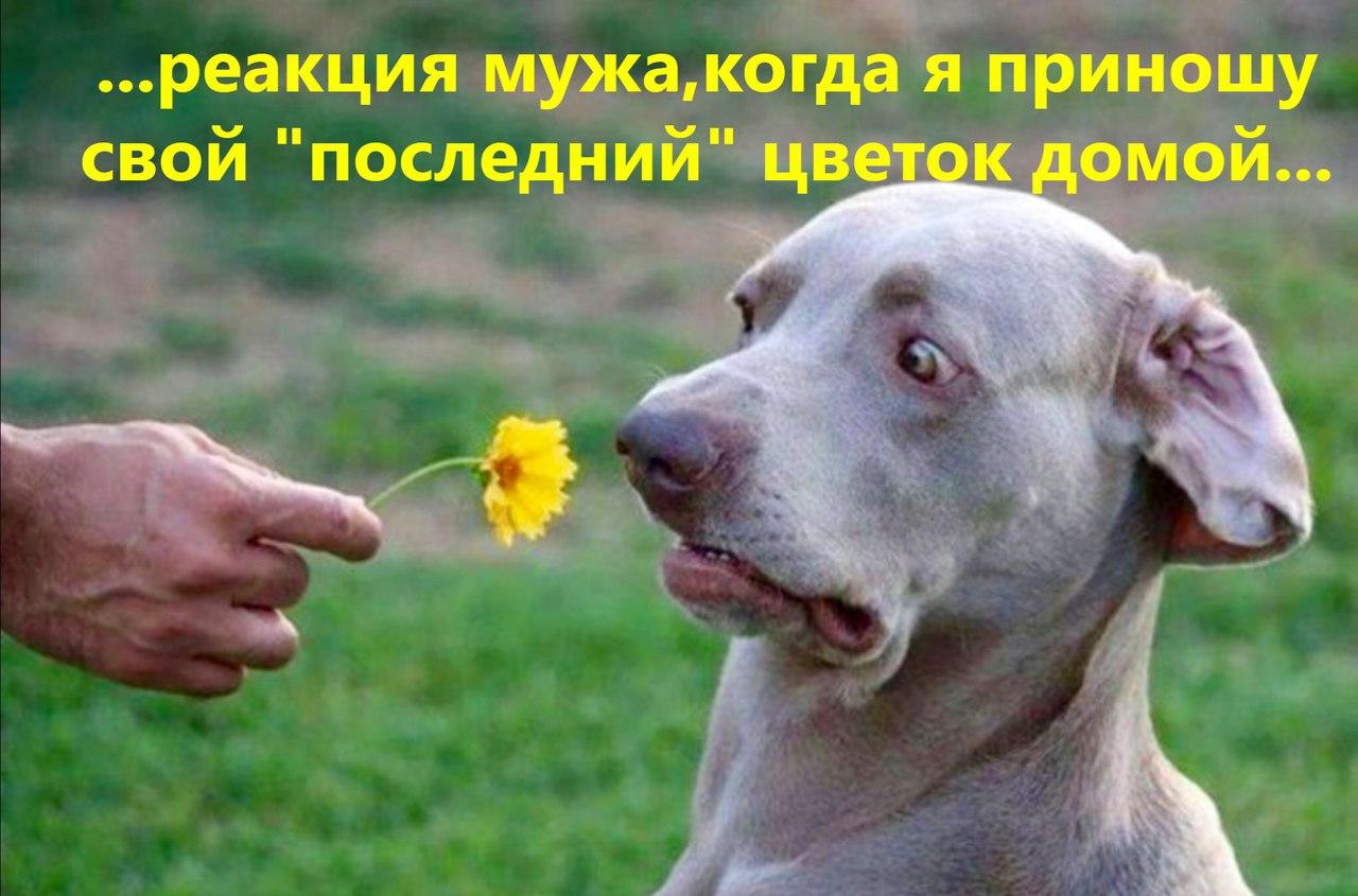 Для настроения - Страница 3 0bZEeGghyvk