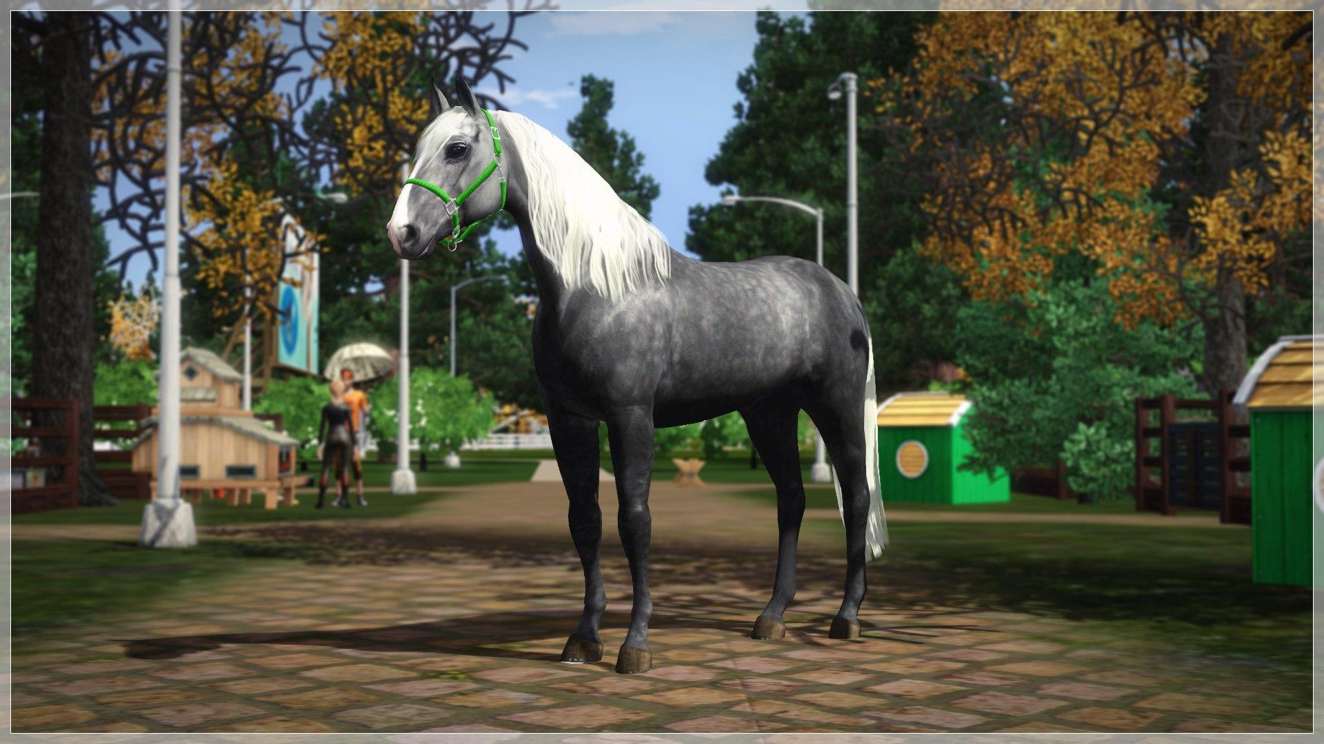 Регистрация лошадей в RHF 2 - Страница 7 I0ywmMFvAq8