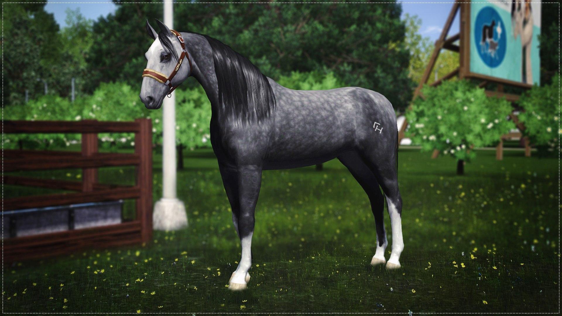 Регистрация лошадей в RHF 2 - Страница 7 Bfv91-PM5UY
