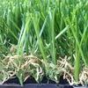Искусственный газон в Казахстане. b-grass.kz