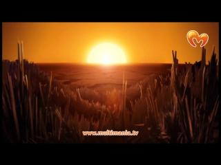 Вакфу - 21 серия (1 сезон). Игол ⁄ Мультфильм