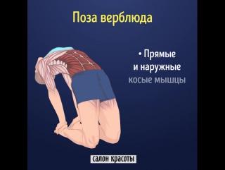 Как работает наше тело? Вот это да!