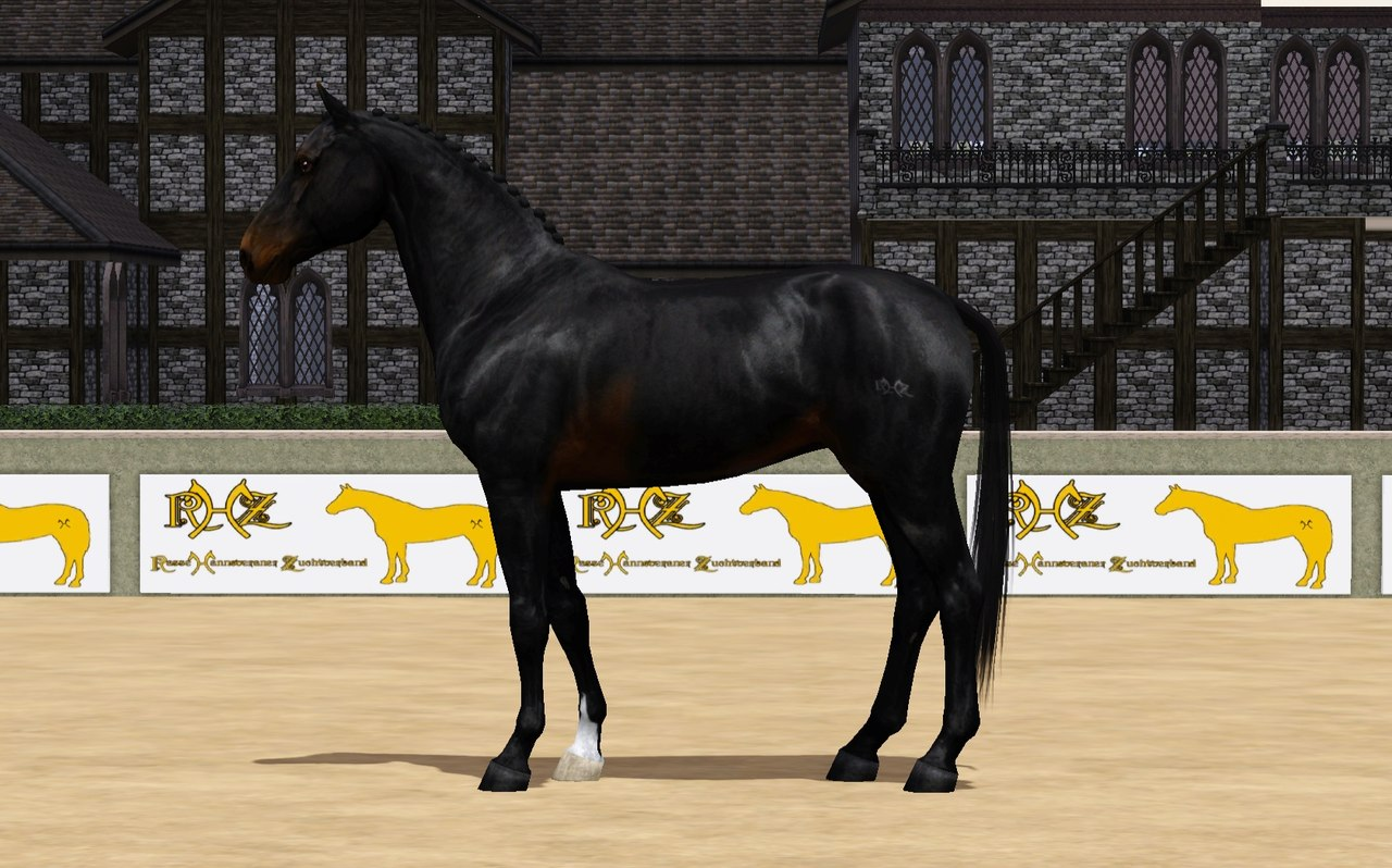 Регистрация лошадей в RHF 2 - Страница 2 2HuXJAR-ynk