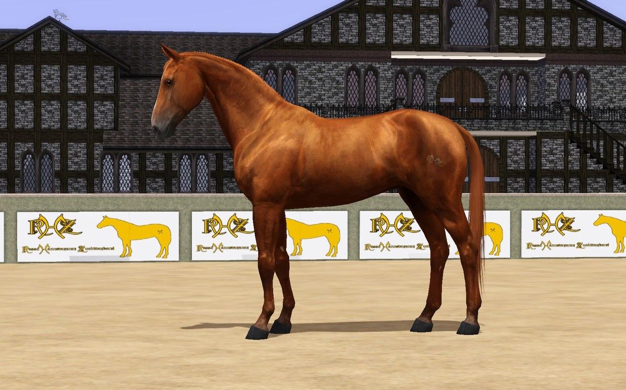 Регистрация лошадей в RHF 2 - Страница 2 OfuylUqI-pY