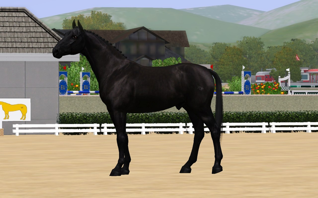 Регистрация лошадей в RHF 2 - Страница 2 V0UT0iBO1NM