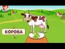 Животные - что едят животные - как разговаривают животные - для детей cartoon мульт ...