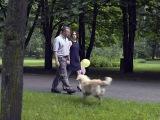 Собачья работа 7 серия