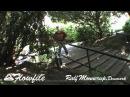 Ralf Monnerup | Remz FlowFile