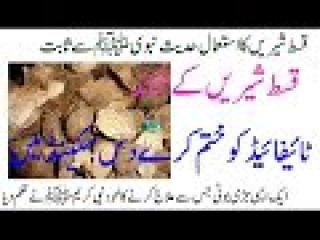 Qust E Shirin Ke Fawaid | Medicine For Cough | Treatment For Typhoid | Treatment For Liver Disease