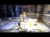 TES Online! Прошел в соло темницы изгнанников. Templar