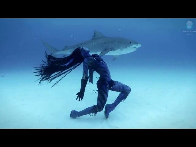 ЖЕНЩИНА ТАНЦЫ С тигровыми акулами