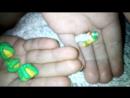 Даша слепила крошечные фигурки из пластилина