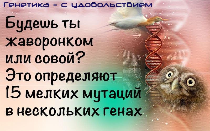 https://pp.userapi.com/c837339/v837339133/7ad68/2dBV1qmTlxc.jpg