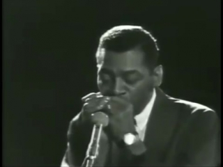 Little Walter - Hound Dog Taylor - Odie Payne ( Walters  Blues Live )