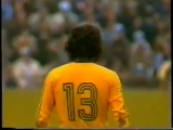Мануэл Ресенде де Матос Кабрал (Нелиньо) - шедевр за сборную Бразилии