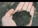 12.Статья Черные Пески. Ядерные воронки под Сарапулом