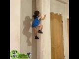 Маленькая девочка лазит по стенам. очень интересно