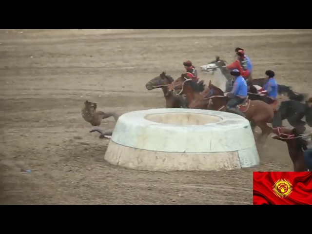 Kok boru Көк бөрү Kyrgyzstan