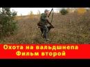 Охота на вальдшнепа с дратхааром. Охота с легавой собакой