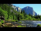 3Hours Relaxing Nature Sounds -River Sounds and Birds Singing for Relax, Meditation, Positive Energy