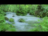 Relaxation Music and Nature Sounds: Water Sound and Birdsong - Super Relax