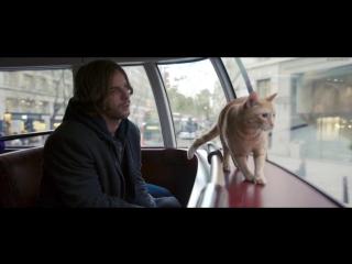 Уличный кот по кличке Боб / A Street Cat Named Bob (2016) 720HD [vk.com/KinoFan]