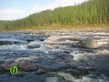 Эвенкия. Река Подкаменная Тунгуска