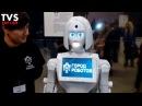 Город роботов выставка в Воронеже Сити парк Град City of robots Exhibition Russia