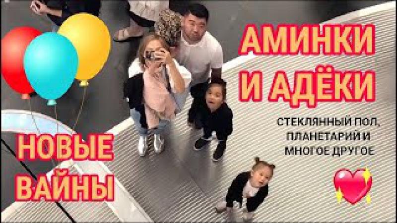 Вайны Аминокки и Адеки! Самое новое! Ржака! 😄 и ВЛОГ EXPO 2017. Aminokkas NEW VINES. Sweet sisters