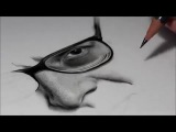 Drawing Pencil Hyperrealism - Time-lapse - RITRATTO VITTORIO SGARBI - Silvia Pagano Art