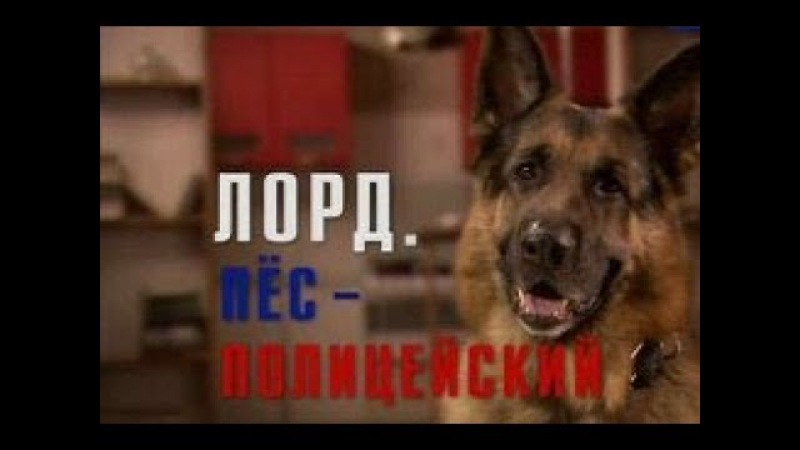 Лорд Пёс полицейский 10 Серия
