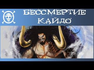 Бессмертие Кайдо и его Способности | Теория по аниме и манге Ван Пис | One Piece