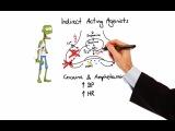 Pharmacology - ADRENERGIC RECEPTORS &amp AGONISTS