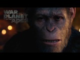 War for the Planet of the Apes - Face Of Caesar