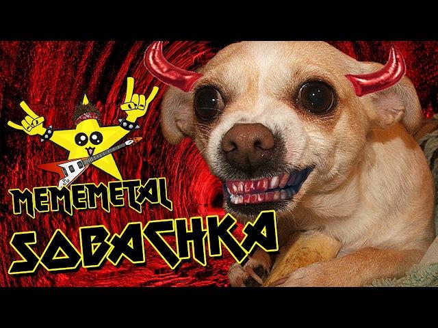 Sobachka / Бешеный Пёс (by MEMEMETAL)
