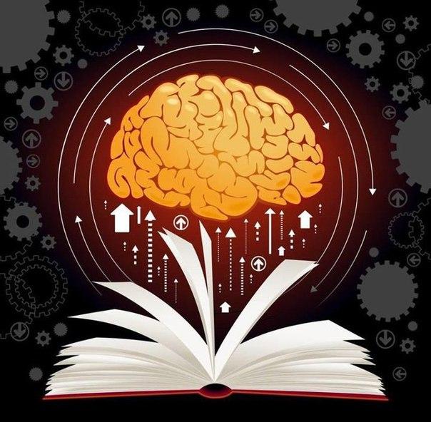 7 книг для развития вашего мозга.1. Роджер Сайп. 'Развитие мозга'В