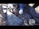 Активисты проекта Не забудем Не простим обнаружили останки военнослужащего Л