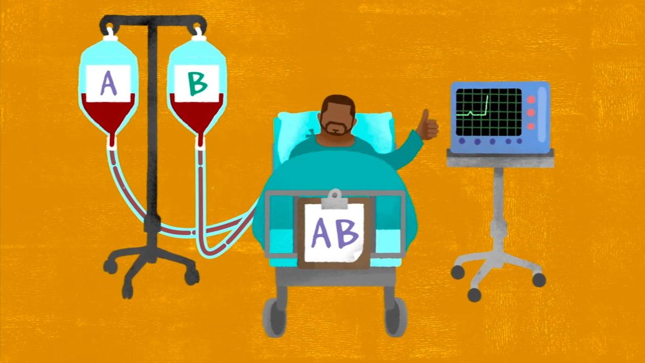 Что такое группа крови