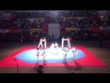 Показательное выступление команды СДЮСШОР им. А.Рахлина на Фестивале боевых искусств