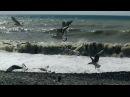 Весеннее море штормит
