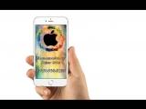 в России украли первый IPhone 8/Айфон iPhone 7 или 7+ Подарит дракон-опт/Обзор iPhone 7 (Replika)/Обзор iPhone X/Обзор iPhone 10