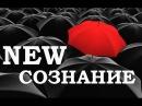 Вадим Зеланд Инволюция сознания