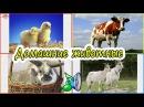 Домашние животные для детей Как говорят животные