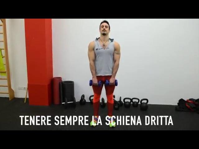 Mezzi Stacchi con manubri - DaveGamba.com mezzi stacchi con manubri - davegamba.com