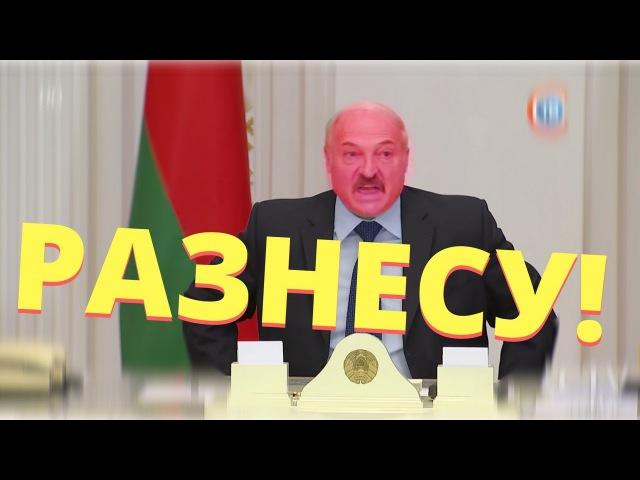 Лукашенко ВЗБЕСИЛСЯ и устроил РАЗНОС. НИН 19