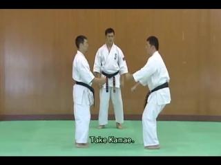 1 Bunkai Kumite Seienchin